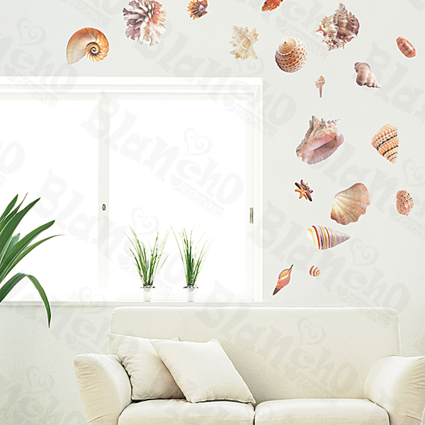 Seashells - Large Wall Decals Stickers